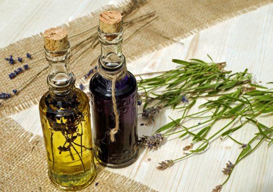 les bases de l'homeopathie